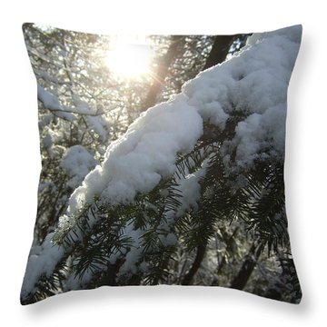 Winter's Paw Throw Pillow