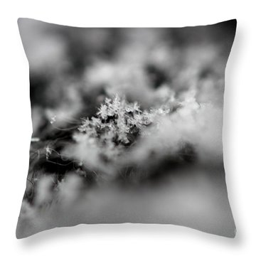 Winter's Peace Throw Pillow