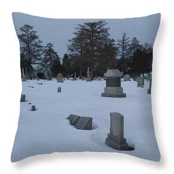 Winters Rest Throw Pillow