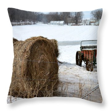 Throw Pillow featuring the photograph Winter's Rest by Linda Mishler