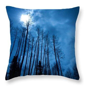 Winters Sky Throw Pillow by Dana Kern