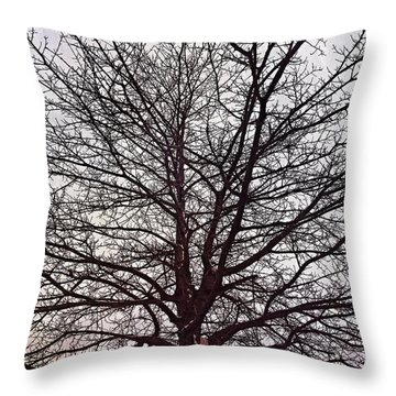 Winter's Touch Throw Pillow