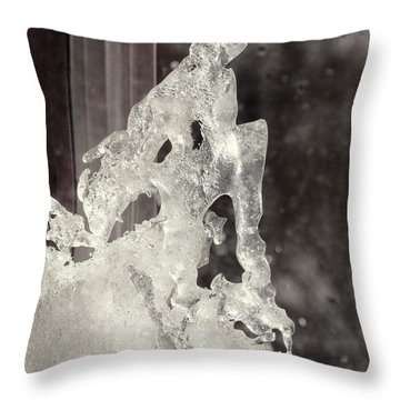 Winters Window Throw Pillow