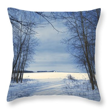 Wintertime At Sheldon Marsh Throw Pillow
