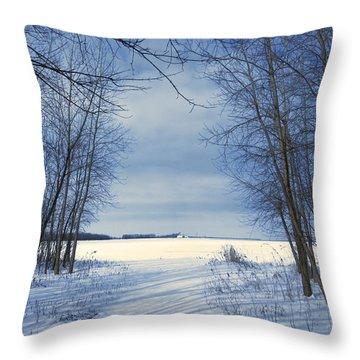 Wintertime At Sheldon Marsh Throw Pillow