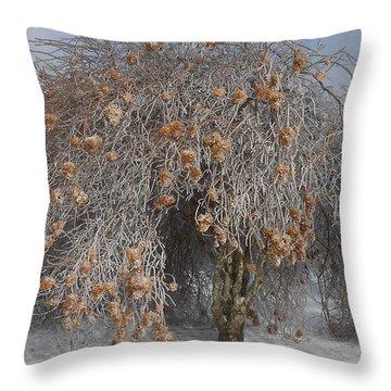 Wintertime Snowball Bush Tree Throw Pillow