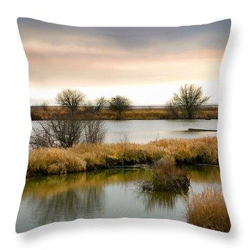 Throw Pillow featuring the photograph Wintery Wetlands by Jordan Blackstone