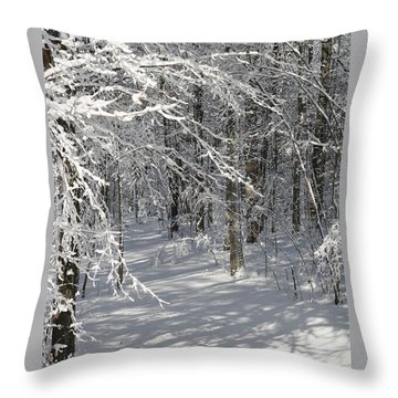 Wintery Woodland Shadows Throw Pillow