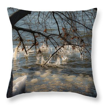 Wintry Day On The Hudson Throw Pillow