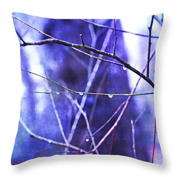 Wintry Throw Pillow by Judi Bagwell