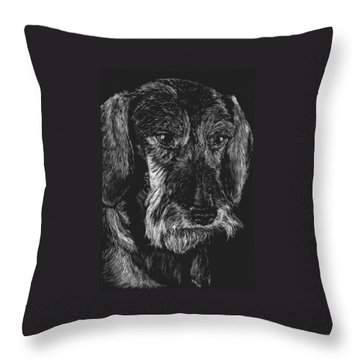Throw Pillow featuring the drawing Wire Haired Dachshund by Rachel Hames