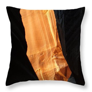 Wire Pass - Buckskin Wash 10 Throw Pillow