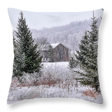 Wisconsin Frost Throw Pillow