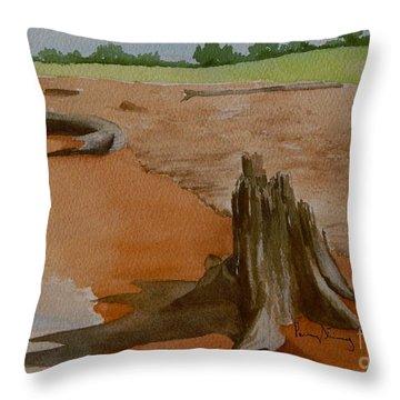 Wisconsin Point Beach Throw Pillow