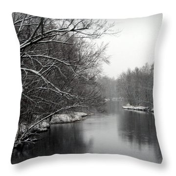 Wisconsin River Throw Pillow by Kay Novy