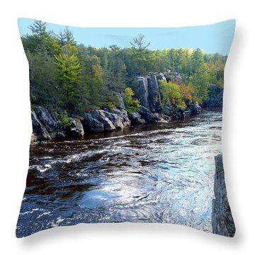 Wisconsin Shores 1 Throw Pillow by Will Borden