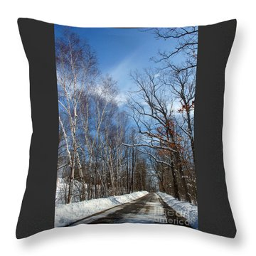 Wisconsin Winter Road Throw Pillow