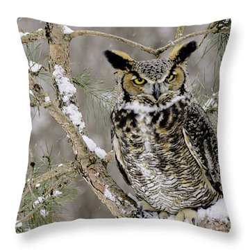 Wise Old Great Horned Owl Throw Pillow