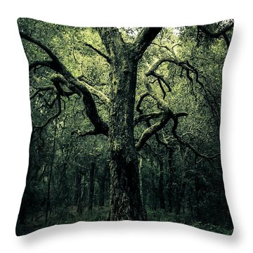Wise Old Tree Throw Pillow by Robin Lewis