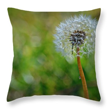 Wish And A Dream Throw Pillow