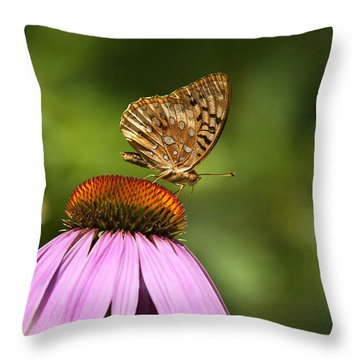 Wished For Pink Throw Pillow by Christina Rollo