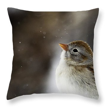 Wishing Upon A Snowflake  Throw Pillow