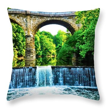 Wissahickon Falls Throw Pillow by Bill Cannon