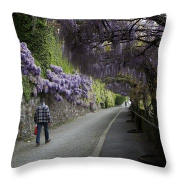 Wisteria And Plaid Throw Pillow by Colleen Williams