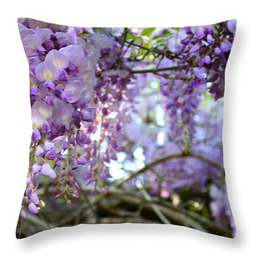 Wisteria Dream Throw Pillow by Cathy Dee Janes