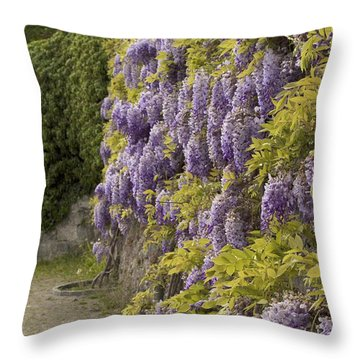 Throw Pillow featuring the photograph Wisteria by Colleen Williams
