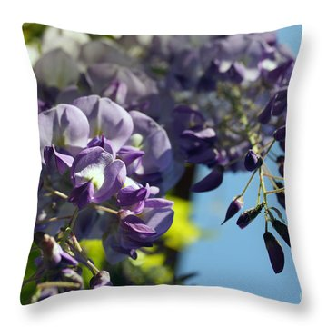Throw Pillow featuring the photograph Wisteria IIi by Cassandra Buckley