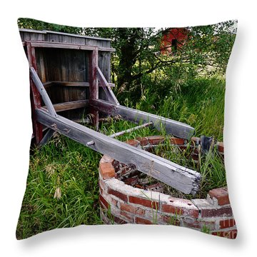 Wistful Well Throw Pillow