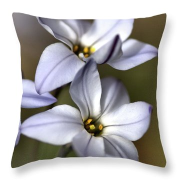 Throw Pillow featuring the photograph With Company by Joy Watson