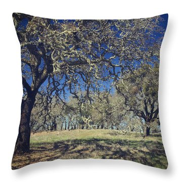 With Every Step You Take Throw Pillow by Laurie Search