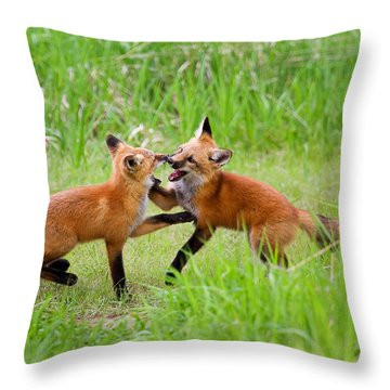 With Kit Gloves Throw Pillow by Jim Garrison
