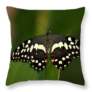 With My Eyes I Can See You Throw Pillow