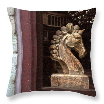 Throw Pillow featuring the photograph Within And Without by Meaghan Troup