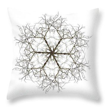 Within Throw Pillow by Debra and Dave Vanderlaan