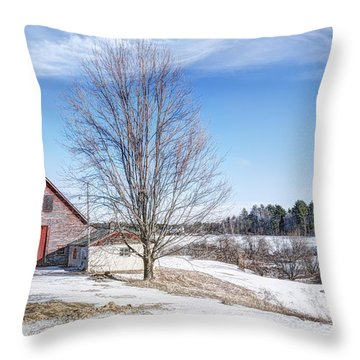 Within It's Boundaries Throw Pillow by Richard Bean