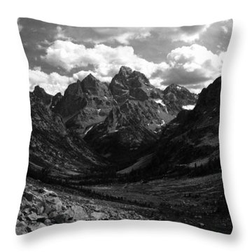 Throw Pillow featuring the photograph Within The North Fork Of Cascade Canyon by Raymond Salani III