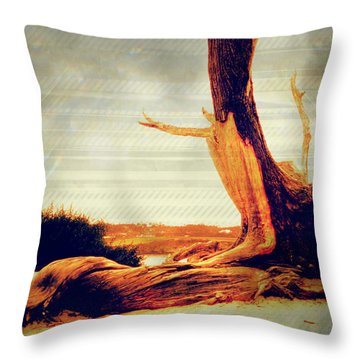 Withstanding The Storms Throw Pillow by Sherry Flaker