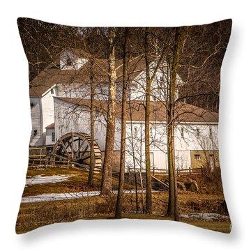 Wolcott Mill Throw Pillow by Grace Grogan