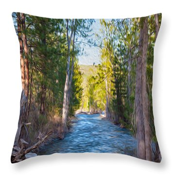 Wolf Creek Flowing Downstream  Throw Pillow by Omaste Witkowski