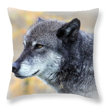 Throw Pillow featuring the photograph Wolf by Steve McKinzie