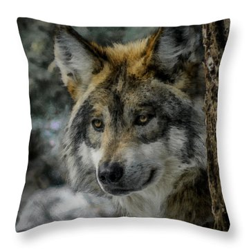 Wolf Upclose Painterly Throw Pillow by Ernie Echols