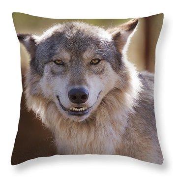 Wolf's Smile  Throw Pillow