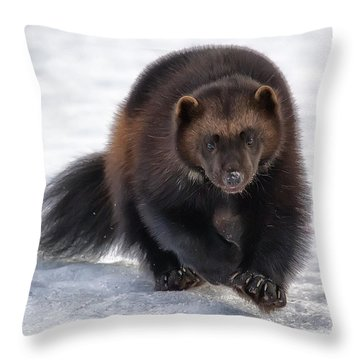 Wolverine On Snow #2 Throw Pillow by Wade Aiken