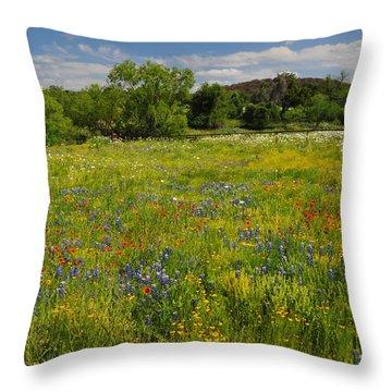 Wonder-filled Meadows Throw Pillow by Lynn Bauer