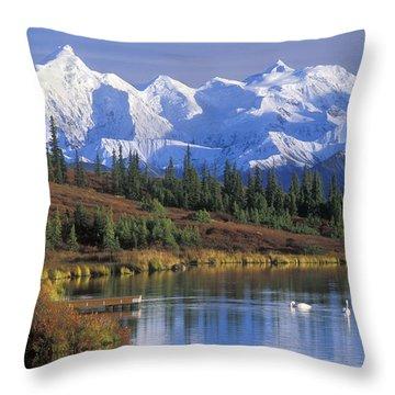 Wonder Lake 2 Throw Pillow