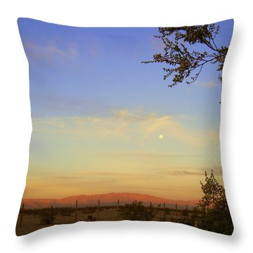 Wonder Valley Throw Pillow